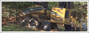 Dartmouth NS Stump Grinding & Removal Tree Services by ISA Certified Arborists